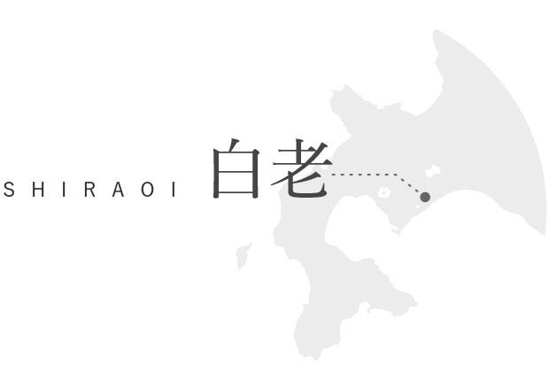 SHIRAOI 白老