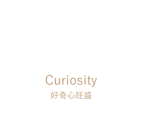 6 - Curiosity : 好奇心旺盛