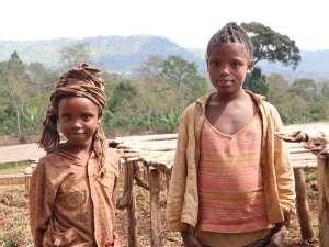 エチオピア ウォルカ・ウリ 農園の少女たち -