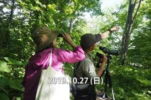 野鳥と珈琲  -