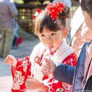 七五三の出張撮影@川越氷川神社/埼玉県/川越市