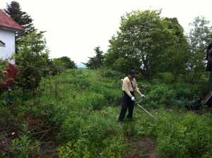 助っ人、彰さん。草刈り担当。