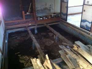 大引だけになりました。これから断熱して新しい床をつくります!